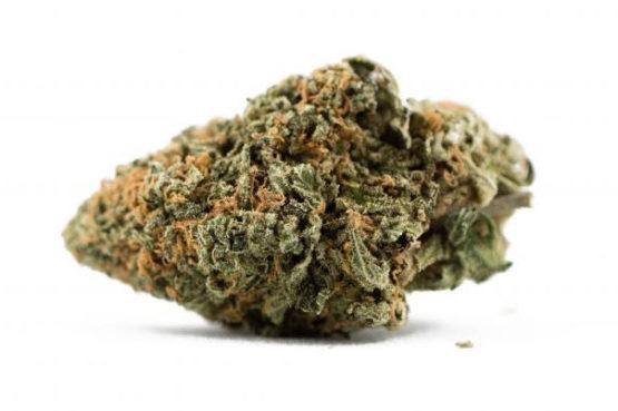Pineapple Express Cannabis Strain 1