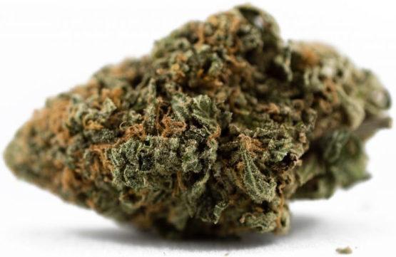 Pineapple Express Cannabis Strain 2