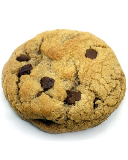 Canndy Shop Edibles THC Chocolate Chip Cookie Upclose