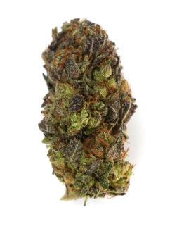 Blackberry Cannabis
