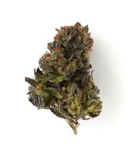 Strawberry Cannabis